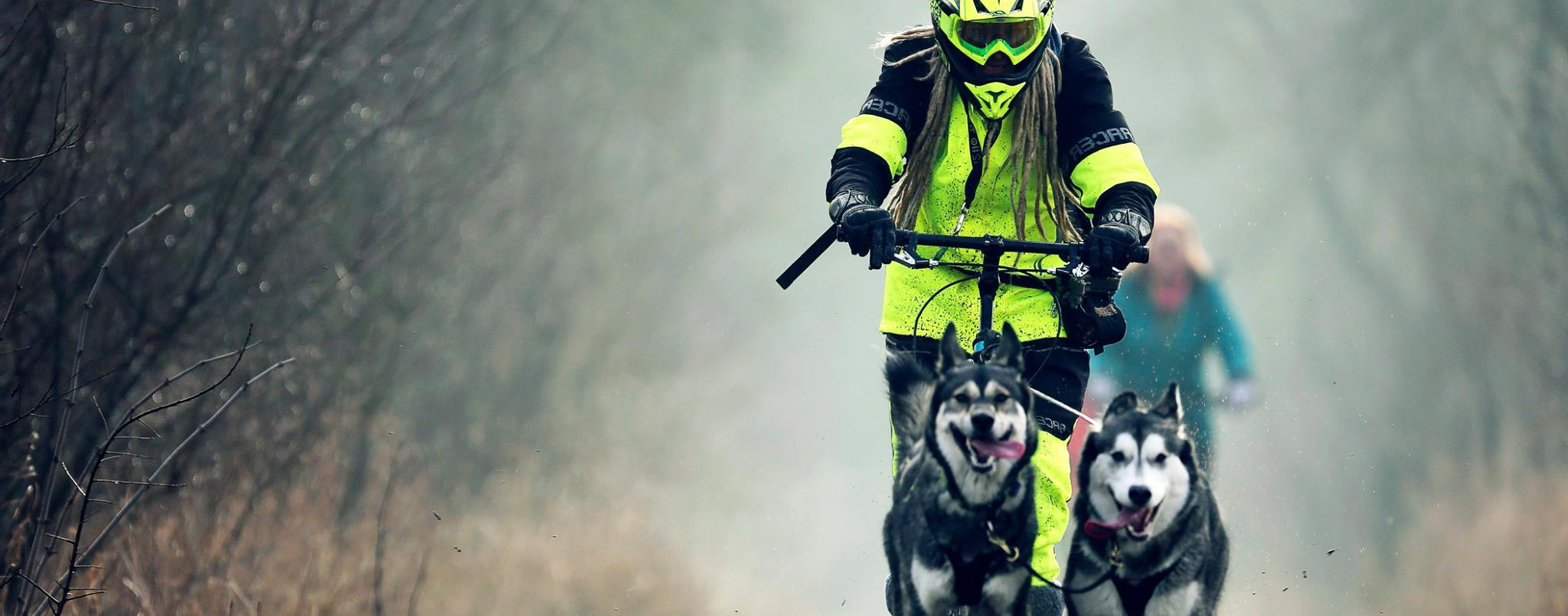 Dogscootering